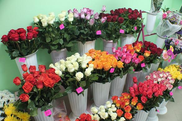 Живые цветы обьемы продаж область купить искуственные деревья цветы