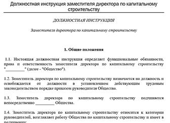 должностная инструкция директора 2019