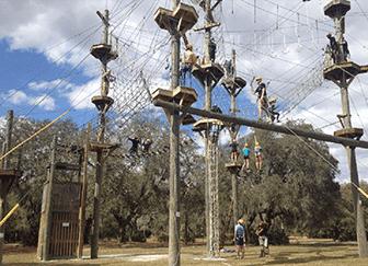 Бизнес план веревочного парка
