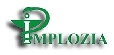 Рис. 8. Логотип